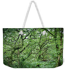 Weekender Tote Bag featuring the photograph Twisted Forest Full Color by Nathan Bush