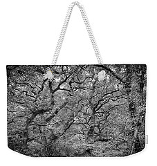 Weekender Tote Bag featuring the photograph Twisted Forest by Nathan Bush