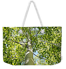 Under The Tall Aspens Weekender Tote Bag