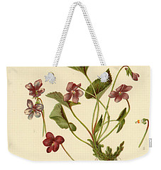 Viola Cucullata  Common Blue Violet Weekender Tote Bag