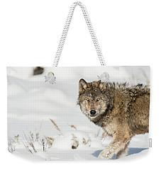 W35 Weekender Tote Bag