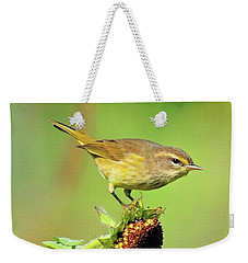 Weekender Tote Bag featuring the photograph Warbler by Debbie Stahre