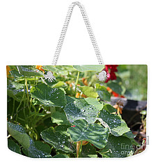 Weekender Tote Bag featuring the photograph Water Beads After The Summer Rain by Tatiana Travelways