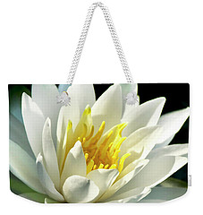 Weekender Tote Bag featuring the photograph Water Lily by Christina Rollo