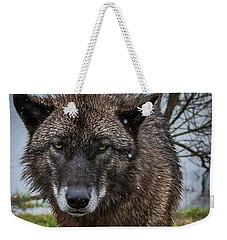 Wet Wolf Weekender Tote Bag