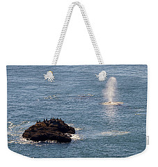 Weekender Tote Bag featuring the photograph Whale Watching Yaquina Head Oregonn by Rospotte Photography