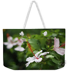 Weekender Tote Bag featuring the photograph White Hibiscus Flower by Pablo Avanzini
