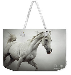 Weekender Tote Bag featuring the photograph White Horse On The White Background Equestrian Beauty by Dimitar Hristov