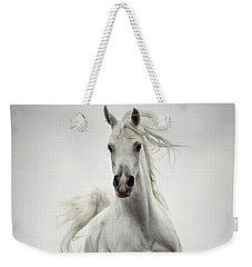 Weekender Tote Bag featuring the photograph White Horse Running In Winter Mist by Dimitar Hristov