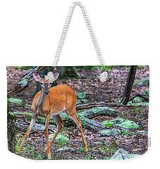 White Tail Deer Weekender Tote Bag