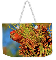 Weekender Tote Bag featuring the photograph White-winged Crossbill by Debbie Stahre