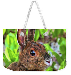 Weekender Tote Bag featuring the photograph Wild Rabbit by Debbie Stahre