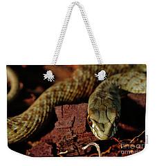 Wild Snake Malpolon Monspessulanus In A Tree Trunk Weekender Tote Bag