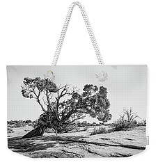 Weekender Tote Bag featuring the photograph Will To Survive by Andy Crawford