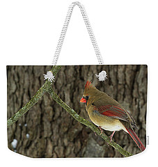 Winter Cardinal Weekender Tote Bag