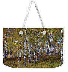 Weekender Tote Bag featuring the photograph Wonders Of The Wilderness by James BO Insogna