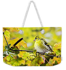 Weekender Tote Bag featuring the photograph Yellow Bird by Top Wallpapers