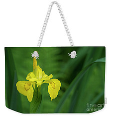 Weekender Tote Bag featuring the photograph Yellow Flag Iris by Tim Gainey