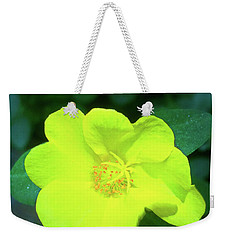 Weekender Tote Bag featuring the photograph Yellow Hypericum - St Johns Wort by James Fannin