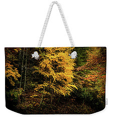 Weekender Tote Bag featuring the photograph Yellow Tree In The Curve by Chrystal Mimbs