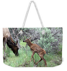 Yellowstone Elk Calf And Cow Weekender Tote Bag