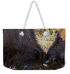 Weekender Tote Bag featuring the photograph Young Bison by Pete Federico