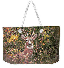 Weekender Tote Bag featuring the photograph Young Buck Portrait by Dan Sproul