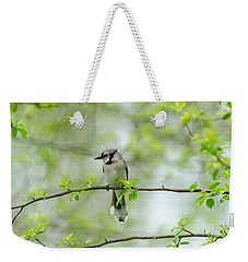 Young Jay Thinking Weekender Tote Bag
