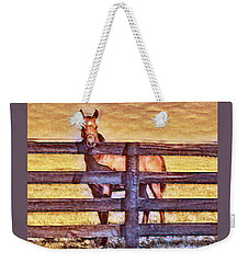 Young Kentucky Thoroughbred Weekender Tote Bag