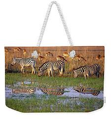 Zebras In Botswana Weekender Tote Bag