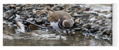 Killdeer Yoga Mats