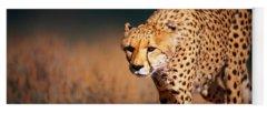 Cheetah Yoga Mats