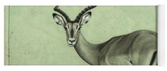 Antelope Yoga Mats