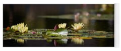 Wetland Yoga Mats