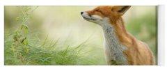 Fox Yoga Mats