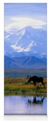 Wildlife Photographs Yoga Mats