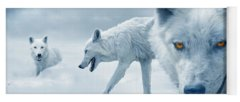 Designs Similar to Arctic Wolves by Mal Bray