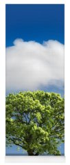 Tree Yoga Mats