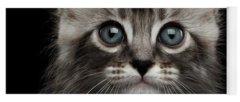 Kitten Yoga Mats