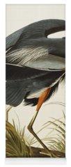 Ornithology Drawings Yoga Mats