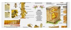 Honeybee Colonies Yoga Mats