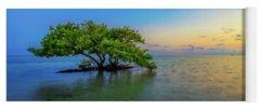 Mangrove Yoga Mats