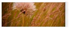 Weeds Yoga Mats