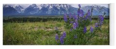 Designs Similar to Lupine Beauty by Chad Dutson
