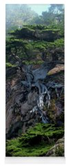 Cypress Photographs Yoga Mats