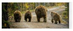 Alaska Photographs Yoga Mats