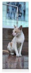 Cute Cat Yoga Mats