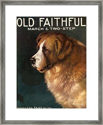 1910s Usa Old Faithful Dogs Framed Print by The Advertising Archives