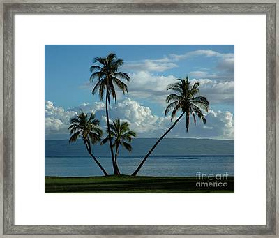 Framed Print featuring the photograph  A Little Bit Of Paradise by Vivian Christopher
