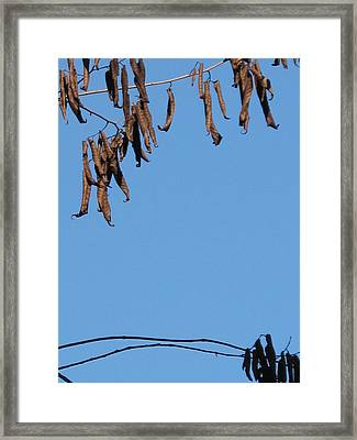 A Little Patience Pays. Framed Print